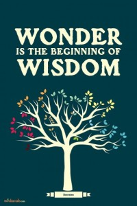 TL005VG-wonder-is-the-beginning-of-wisdom-poster